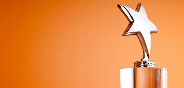 award,trophy,prize