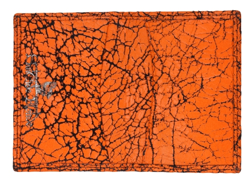 Yes-Ive-Crawled-On-Glass-Card-Holder-Inside-Neon-Orange_high res