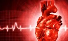 heart,rate,health